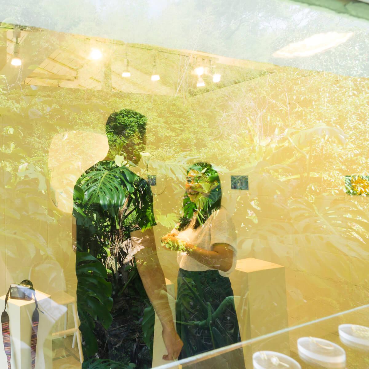 屋久島しずくギャラリージュエリーの部屋 屋久島の緑に囲まれて 結婚指輪の相談会 屋久島でつくる結婚指輪