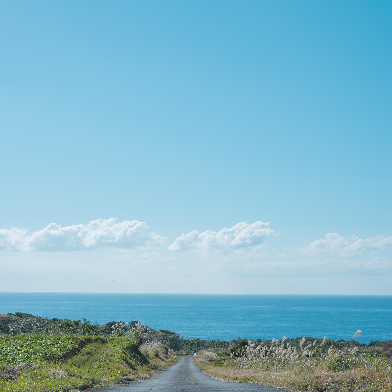 屋久島の空、海まで続く道 屋久島日々の暮らしとジュエリー 屋久島でつくる結婚指輪