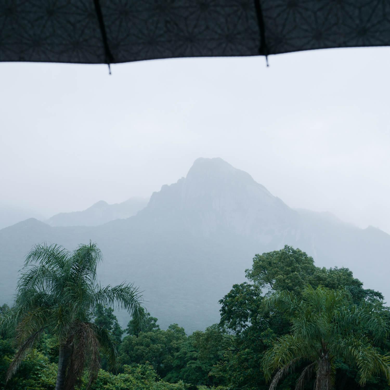 屋久島の山々 屋久島山とジュエリー 屋久島の雨 オーダーメイドマリッジリングのモチーフ