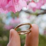 屋久島の桜の下 オーダーメイドマリッジリング  ゴールド、ダイヤモンド、プラチナ 屋久島でつくる結婚指輪
