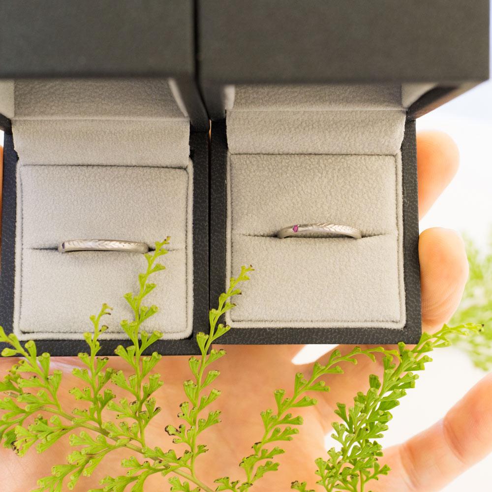 ケースの中のオーダメイド結婚指輪 屋久島のシダの葉っぱ プラチナ、シダモチーフ 屋久島でつくる結婚指輪