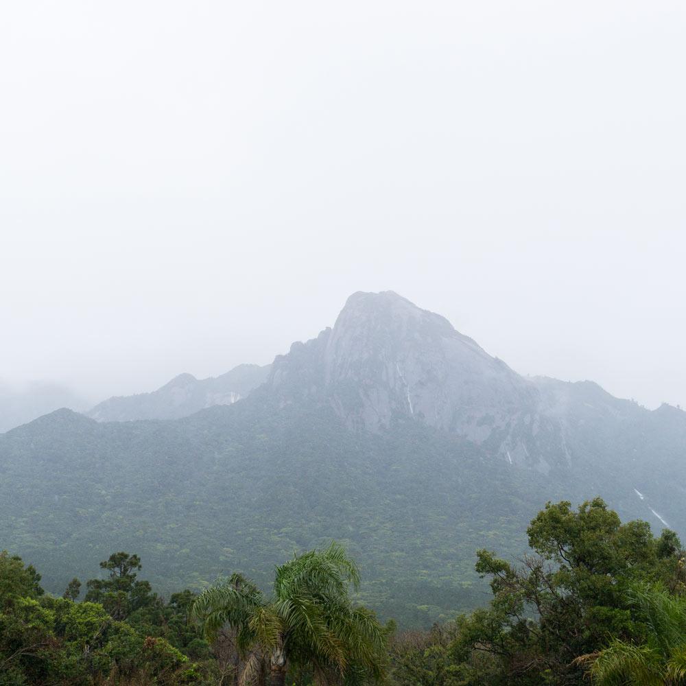 屋久島の山 オーダーメイドマリッジリングのモチーフ 屋久島日々の暮らしとジュエリー