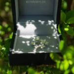 屋久島の緑木陰 ケースの中にブローチ 屋久島の菜の花モチーフ オーダーメイドジュエリー シルバー