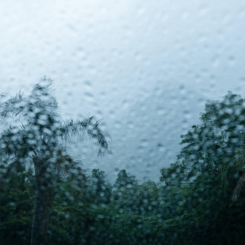 屋久島の雨、山々 屋久島雨とジュエリー オーダーメイドマリッジリングのインスピレーション