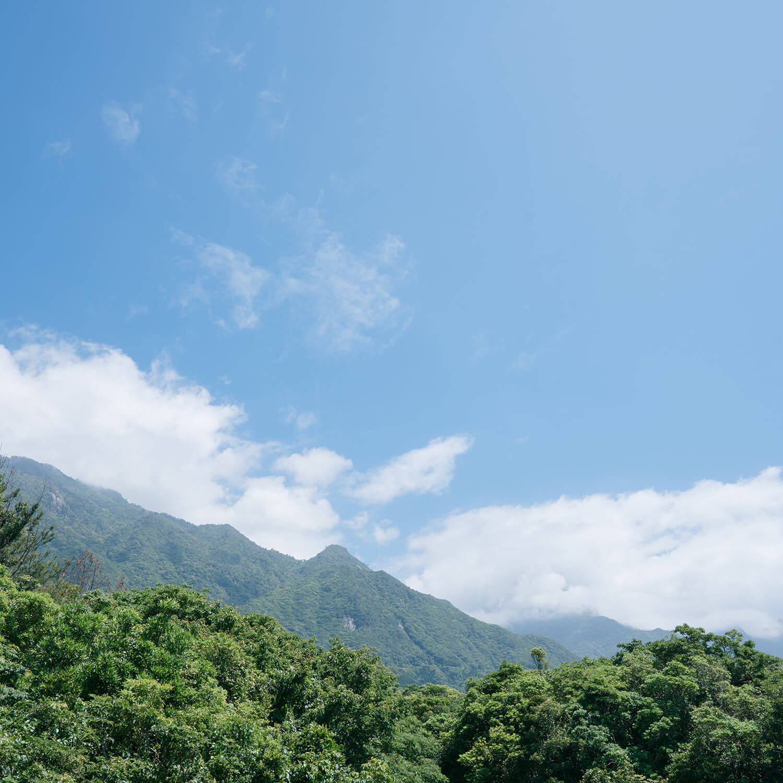 屋久島の山々空 屋久島日々の暮らしとジュエリー 屋久島でオーダーメイドジュエリー