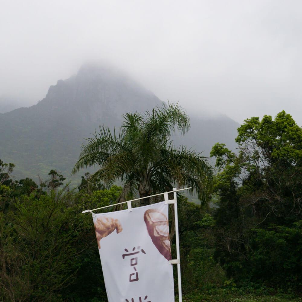 屋久島の山々、雨、霧、パン屋の看板 屋久島日々の暮らしとジュエリー