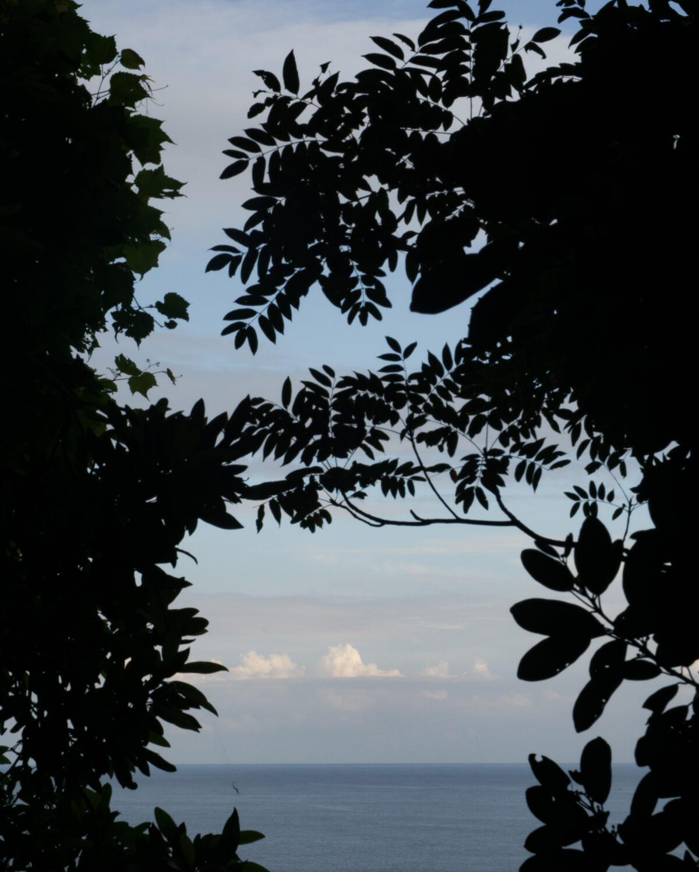 屋久島の森から望む海、空 屋久島日々の暮らしとジュエリー オーダーメイドマリッジリングのモチーフ