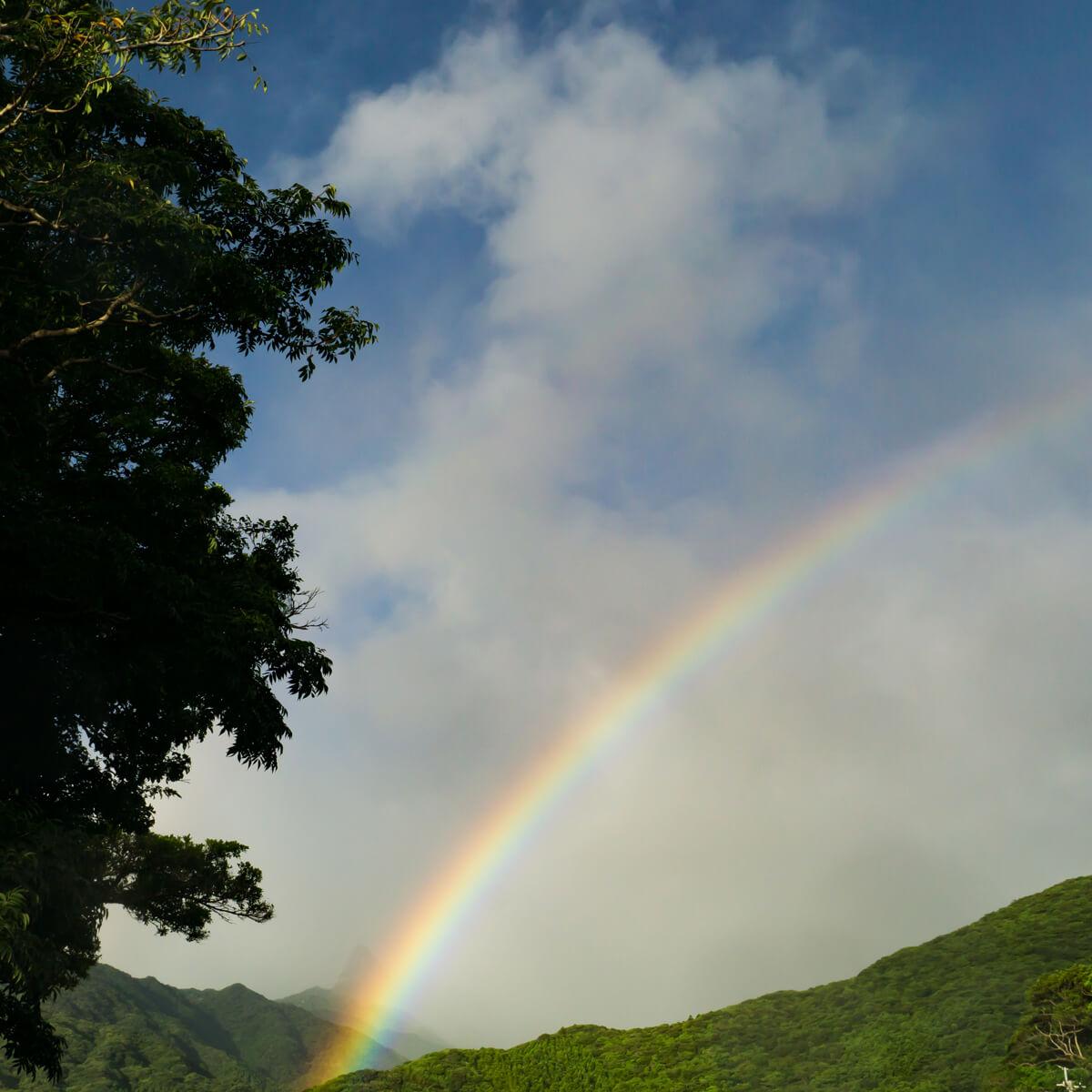 屋久島の山々、虹 屋久島日々の暮らしとジュエリー