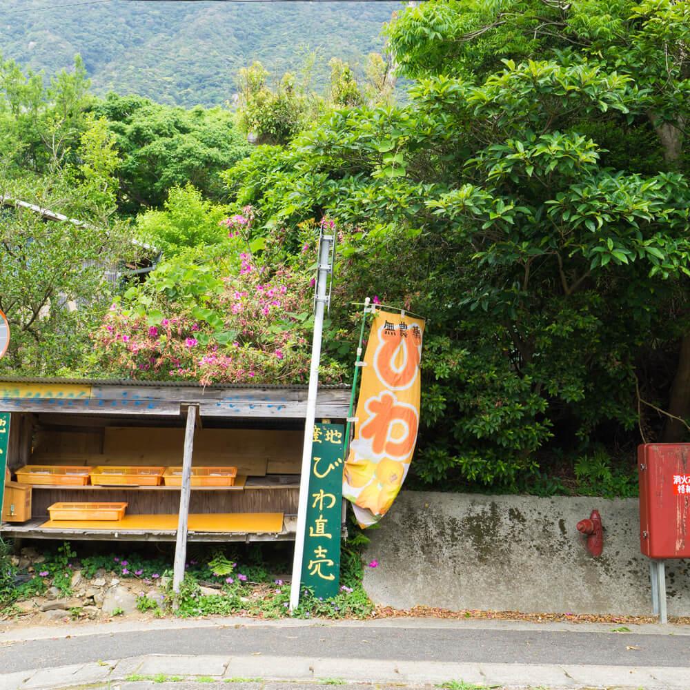 屋久島 道路沿い びわの無人市 屋久島日々の暮らしとジュエリー