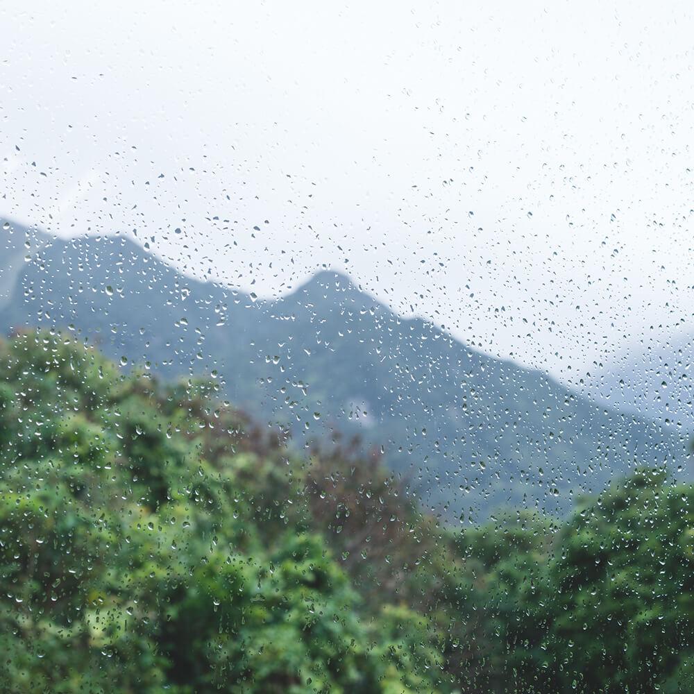 窓越しの屋久島の雨 オーダーメイドジュエリーのアトリエ 屋久島雨とジュエリー オーダーメイドマリッジリングのインスピレーション