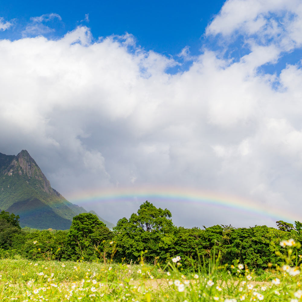 屋久島の虹 山々 青空