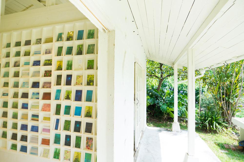 屋久島 しずくギャラリー ディスプレイされる高田裕子のポストカード