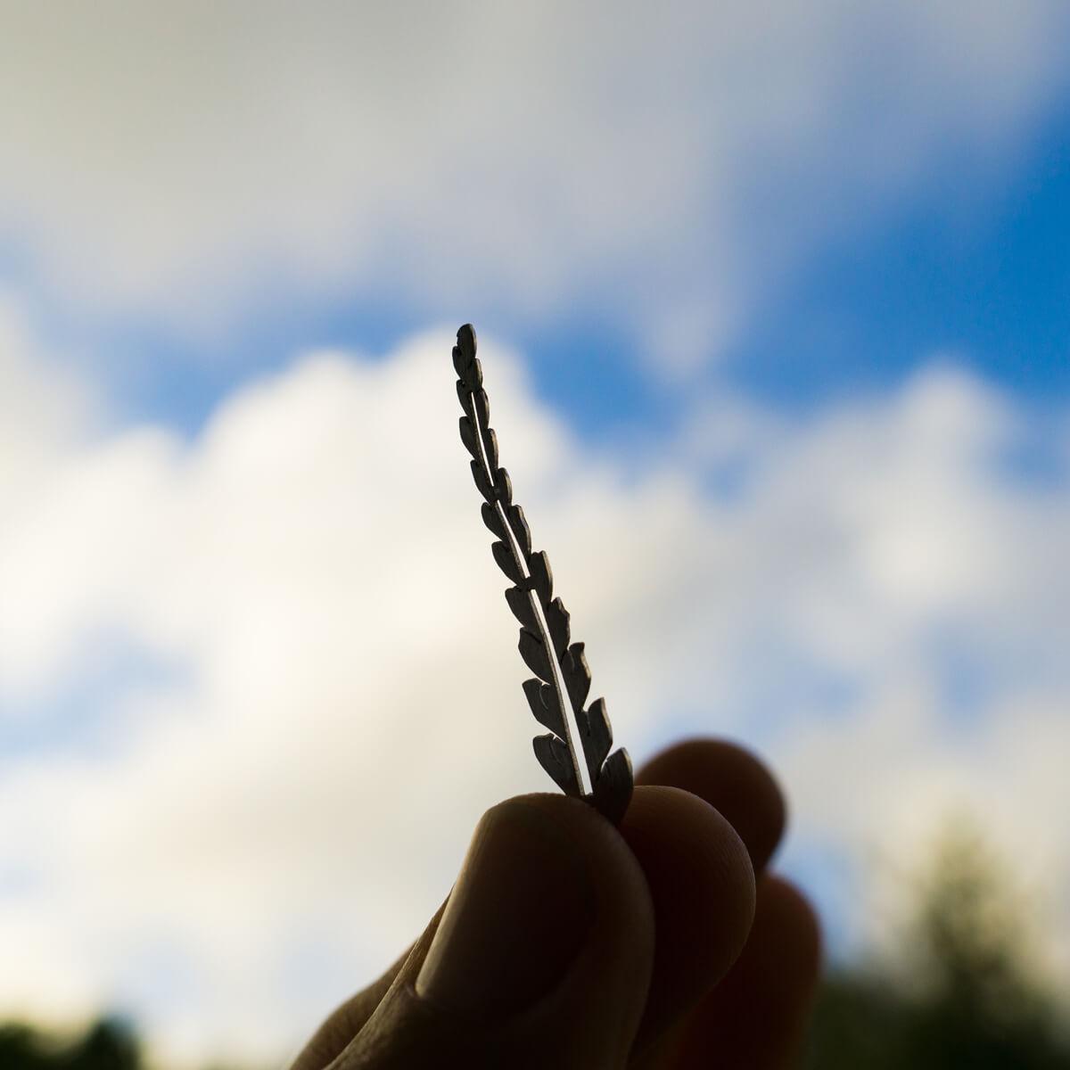 オーダーメイドエンゲージリングの制作風景 シダの形のリング 越しの屋久島の青空 屋久島でつくる婚約指輪