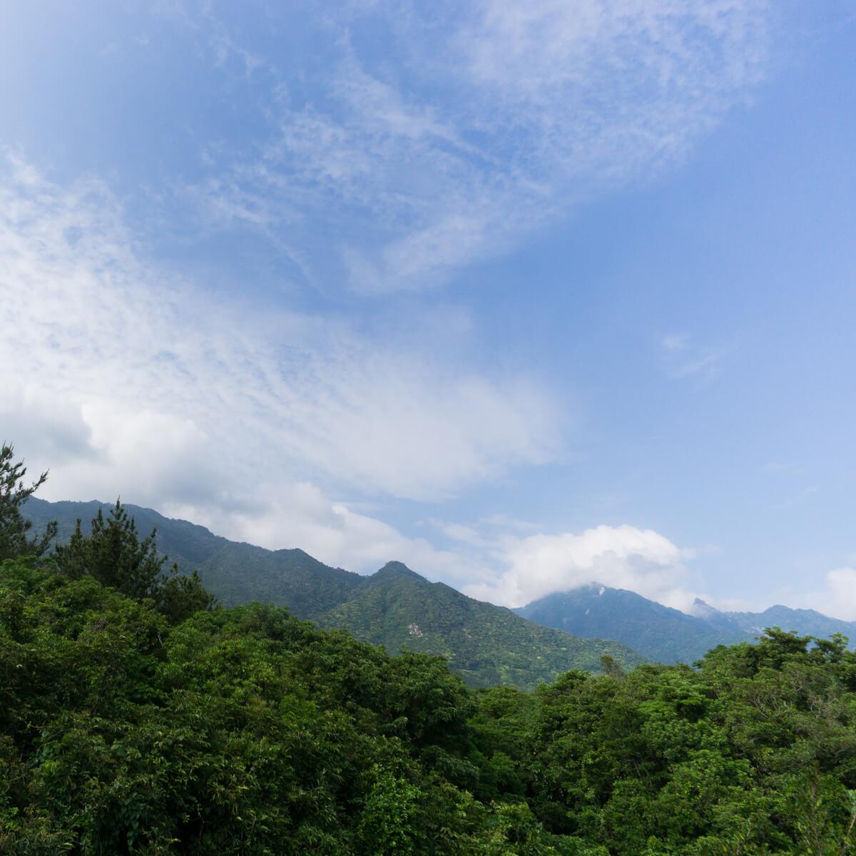屋久島の山々、空 屋久島日々の暮らしとジュエリー オーダーメイドマリッジリングのモチーフ