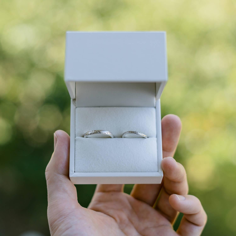 手の中に結婚指輪のケース、シルバーの結婚指輪 屋久島の緑バック 屋久島のシダモチーフ 屋久島でつくる結婚指輪