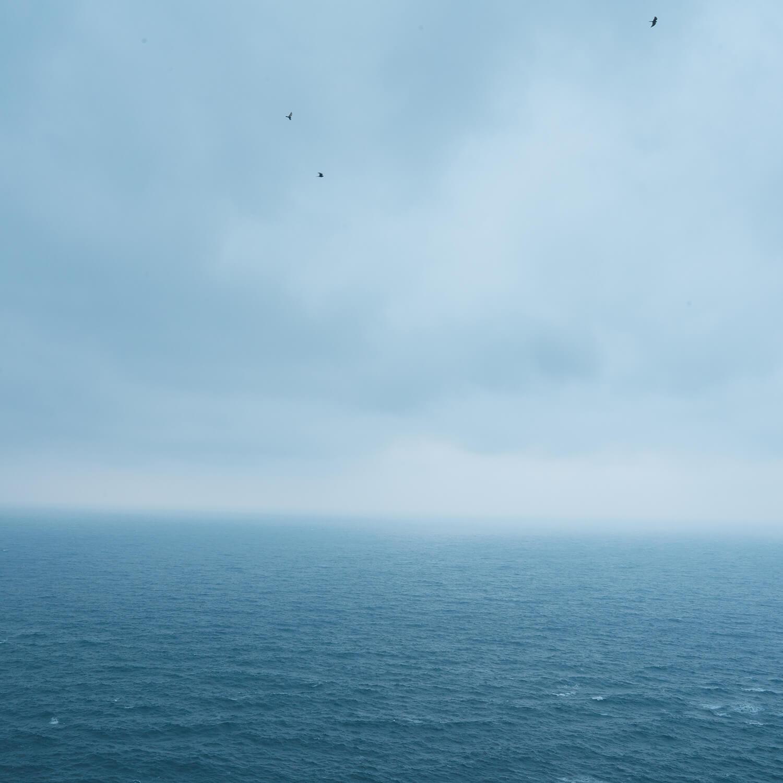 屋久島の西側へ。今日はルーペとピンセットを置いて、1日を過ごしました。