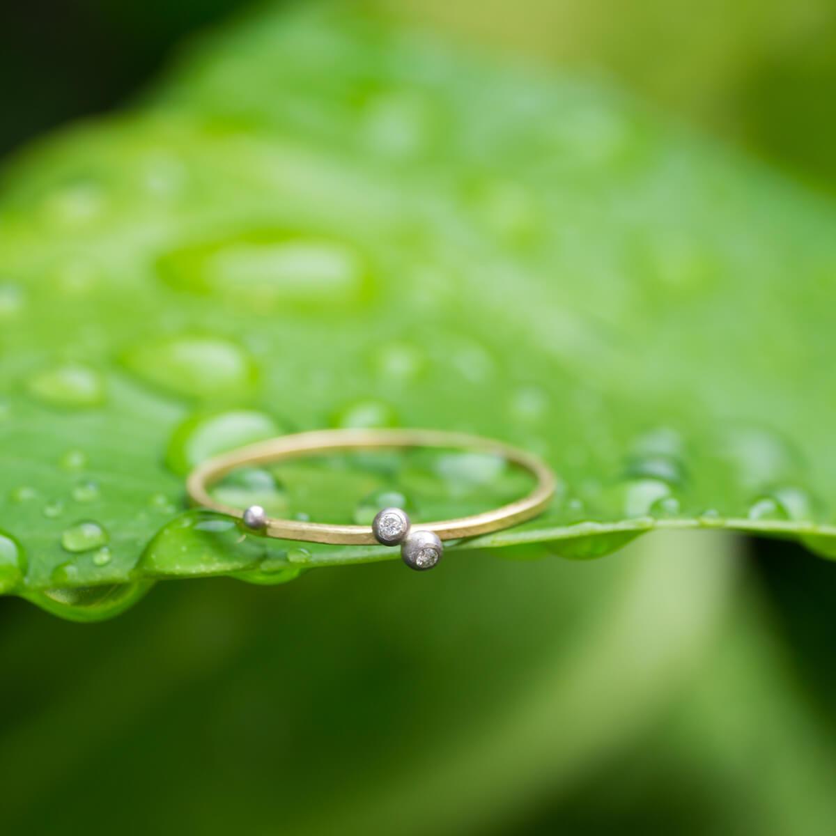 しずくの指輪 屋久島の雨のしずく ゴールド、プラチナ、ダイヤモンド 屋久島しずくギャラリーの庭 屋久島でつくる結婚指輪