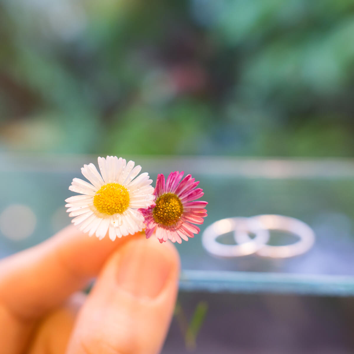 屋久島しずくギャラリーの室内 手に花 奥に結婚指輪 シルバー 屋久島でつくる結婚指輪