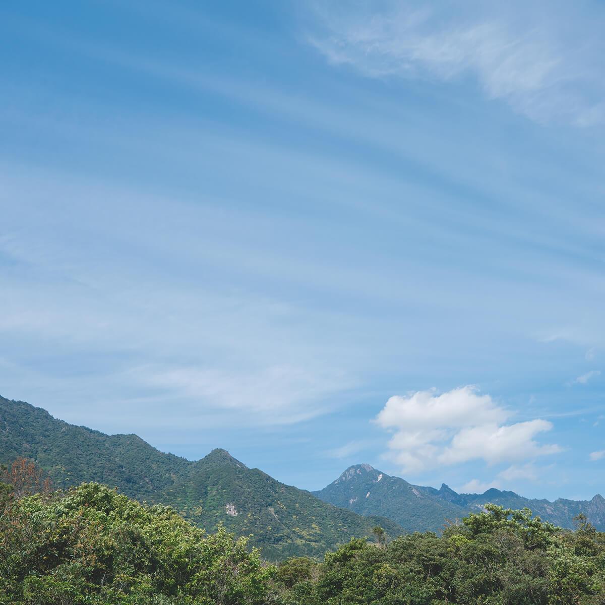 ジュエリーのアトリエから望む屋久島の山々 屋久島山とジュエリー オーダーメイドマリッジリングのモチーフ