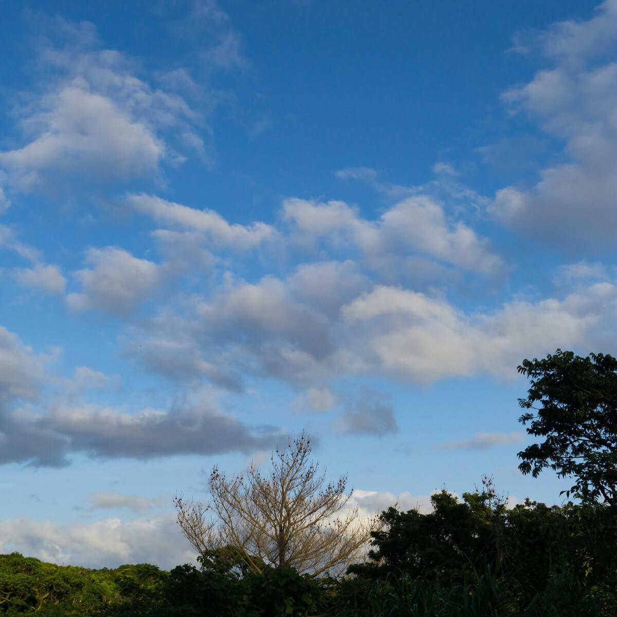 夕暮れ時 屋久島の空 オーダーメイドマリッジリングのモチーフ