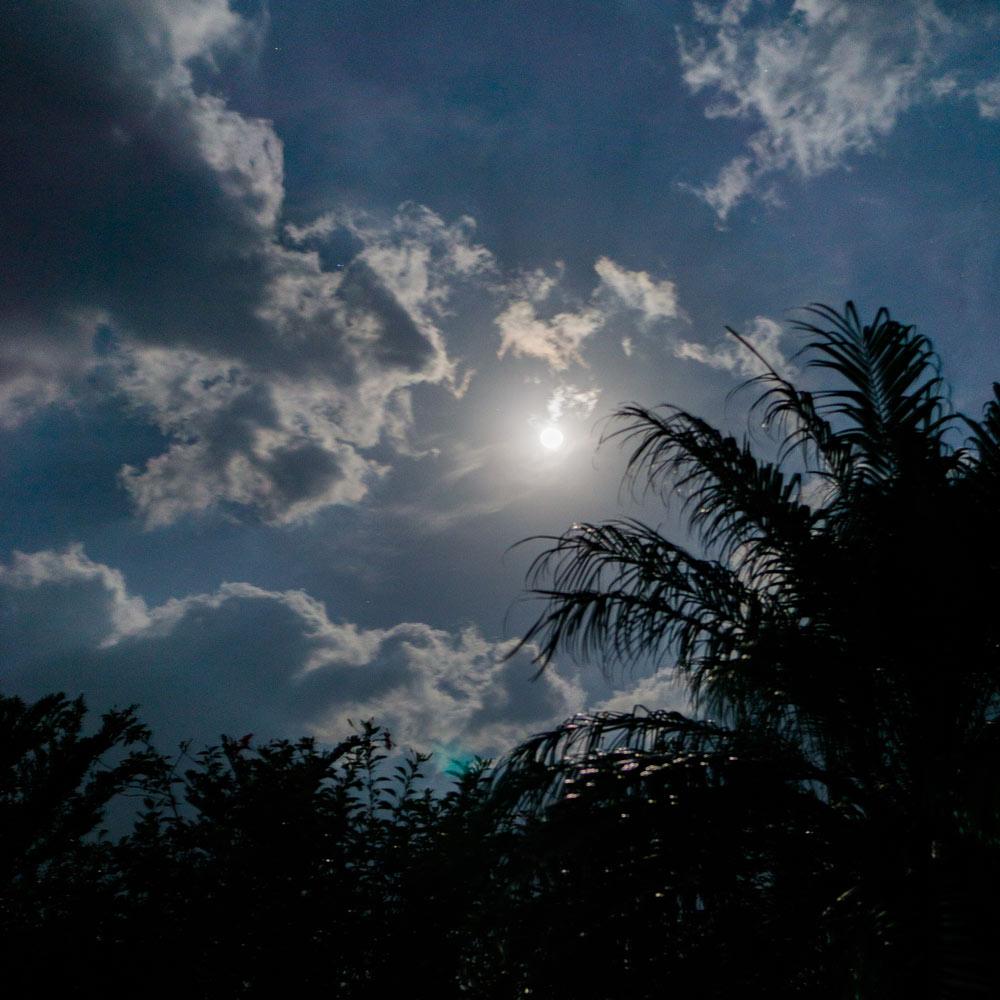 屋久島 満月の夜