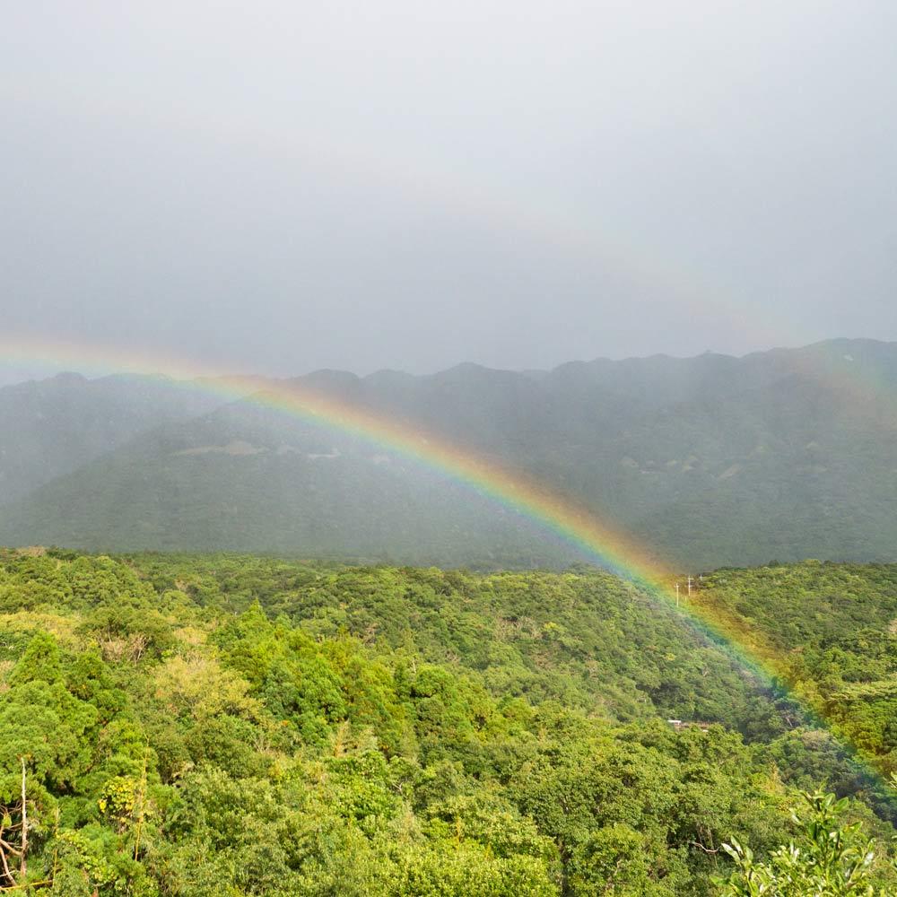 屋久島の虹 ダブルレインボー
