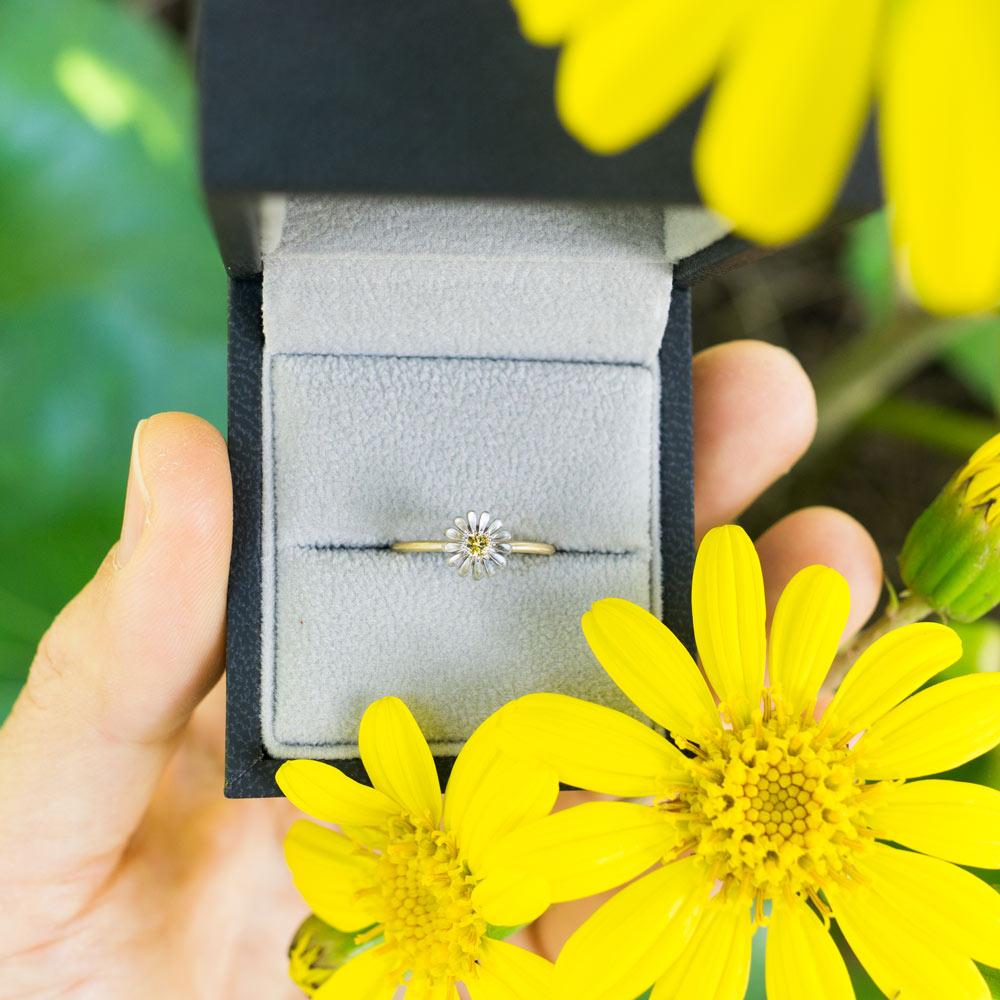 ケースの中、オーダーメイドエンゲージリング お花の婚約指輪 ゴールド、プラチナ 屋久島のツワブキモチーフ 屋久島で作る婚約指輪