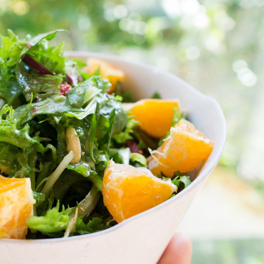 野菜サラダ 屋久島日々の暮らしとジュエリー