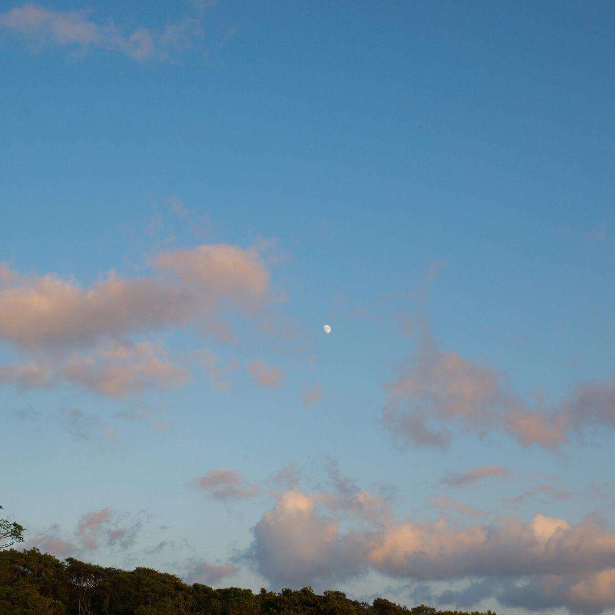 屋久島の空 つき 屋久島日々の暮らしとジュエリー オーダーメイドマリッジリングのモチーフ