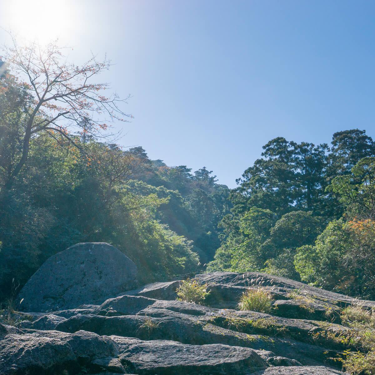 岩山 屋久島 白谷雲水峡 屋久島森とジュエリー オーダーメイドジュエリーのインスピレーション