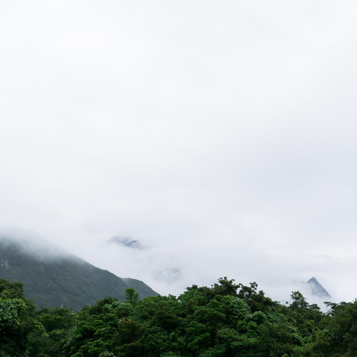 屋久島の山々 霧 屋久島日々の暮らしとジュエリー オーダーメイドジュエリーのアトリエから見える屋久島の風景