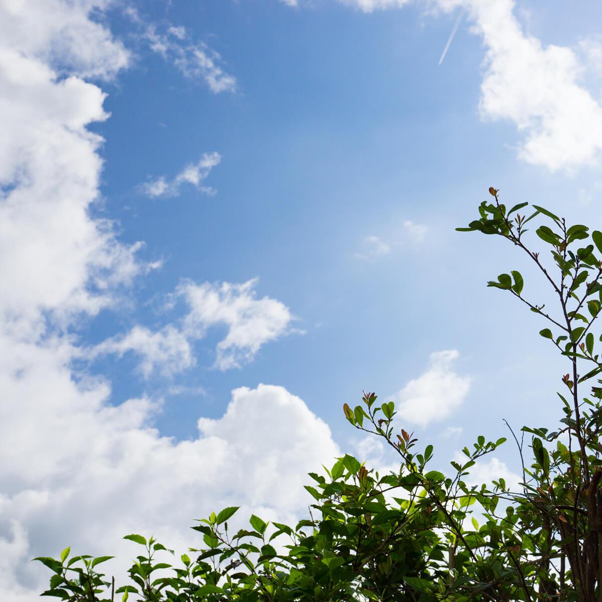 屋久島の空 青空 屋久島日々の暮らしとジュエリー オーダーメイドジュエリーのアトリエ