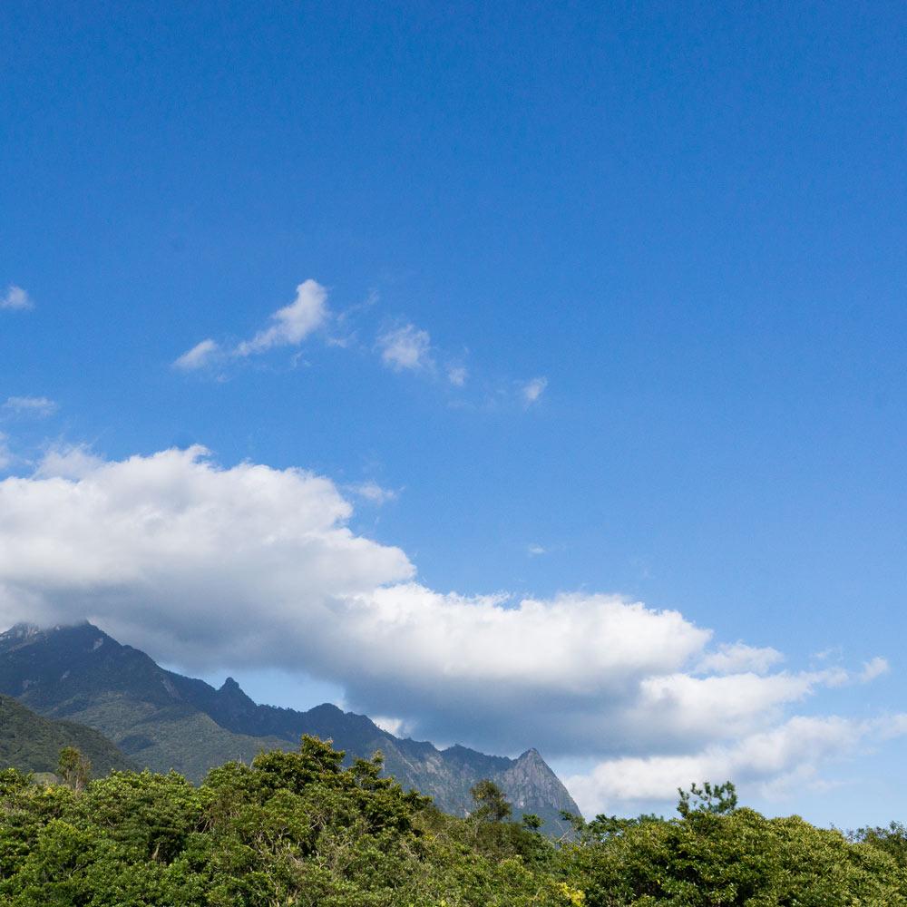 屋久島の山々 青空 オーダーメイドマリッジリングのモチーフ
