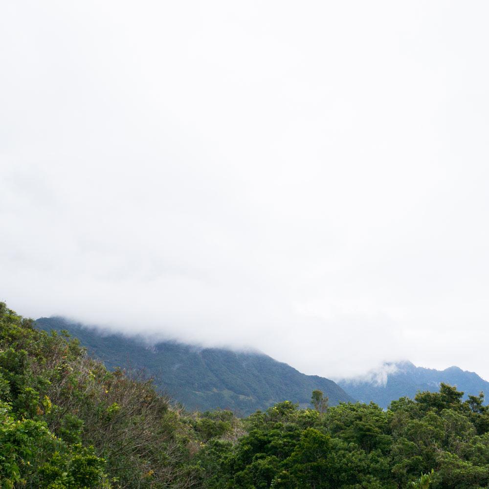 屋久島の山々 オーダーメイドマリッジリングのモチーフ 屋久島でつくる結婚指輪