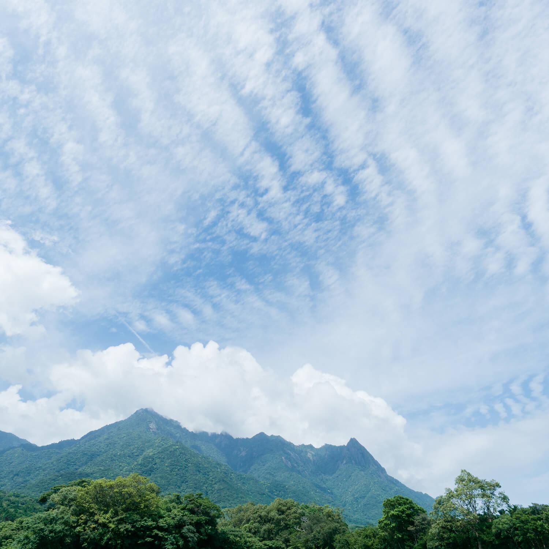 屋久島の山、空 屋久島日々の暮らしとジュエリー オーダーメイドマリッジリングのモチーフ