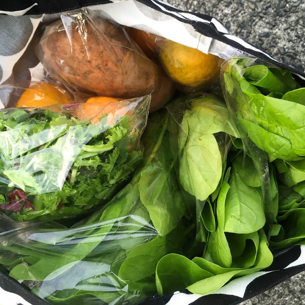 鞄一杯の屋久島野菜 屋久島日々の暮らしとジュエリー