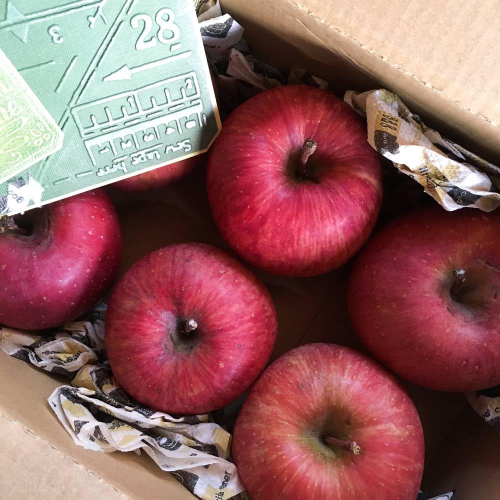 箱いっぱいのリンゴ 屋久島日々の暮らしとジュエリー