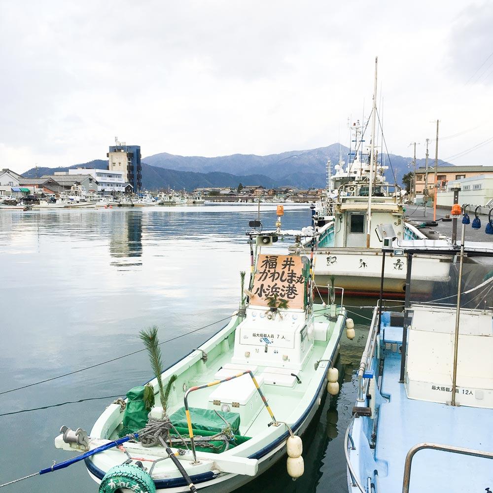 屋久島から若狭湾にやって来た。シンプルで繊細なお正月。