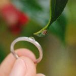 オーダーメイドマリッジリング 制作過程 屋久島の緑バック プラチナ 屋久島で作る結婚指輪