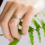 シダモチーフの指輪 プラチナ、ゴールド 指につけて シダの葉とともに