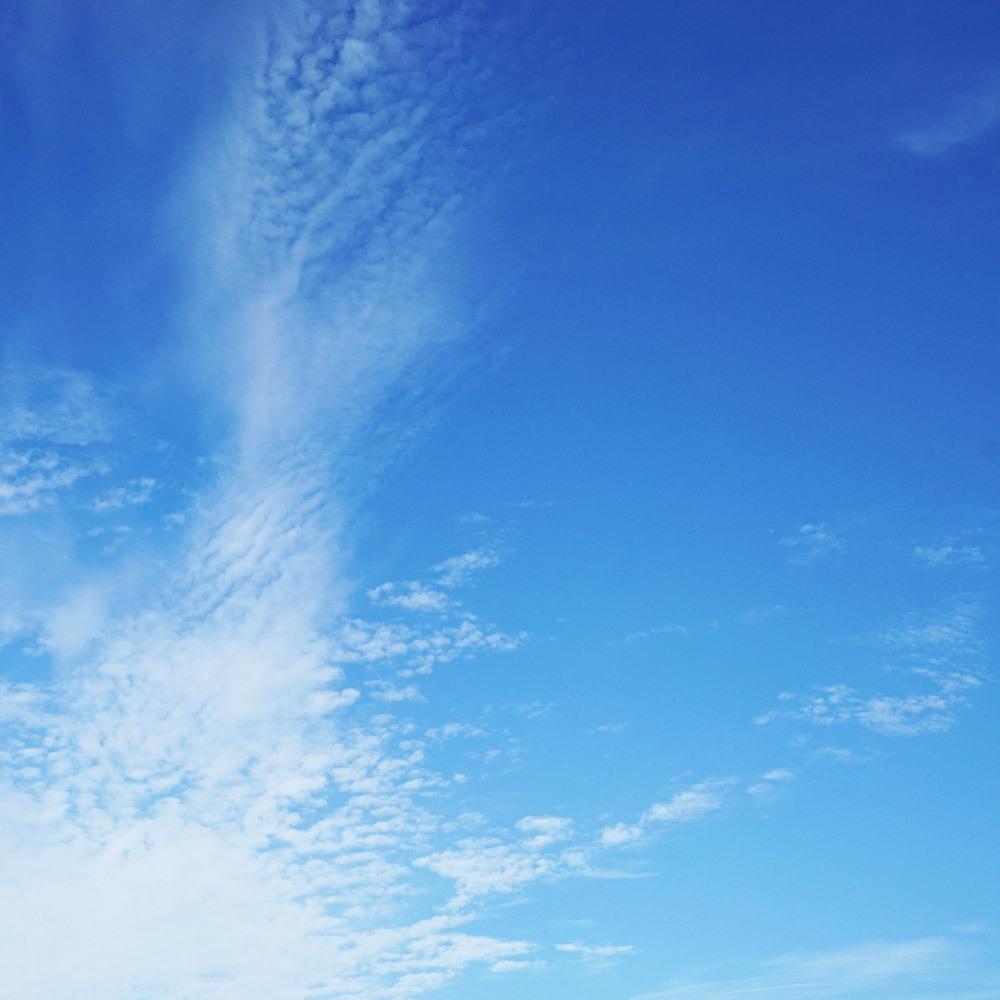 久しぶりに晴れ渡った空