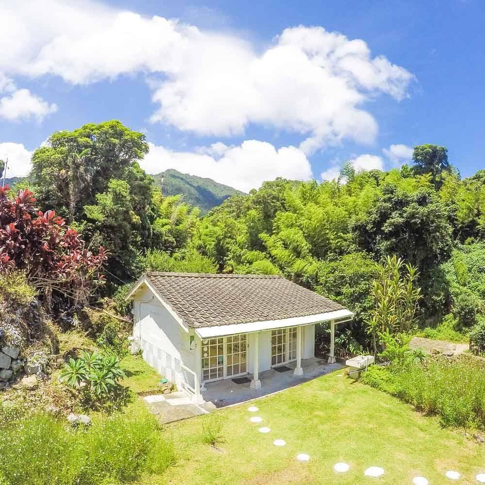 屋久島しずくギャラリーと青空、屋久島の緑に囲まれて