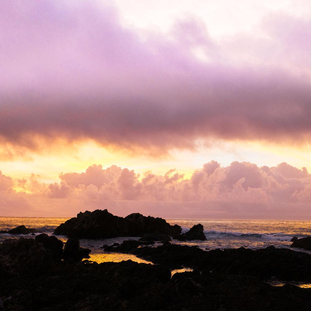 屋久島の景色