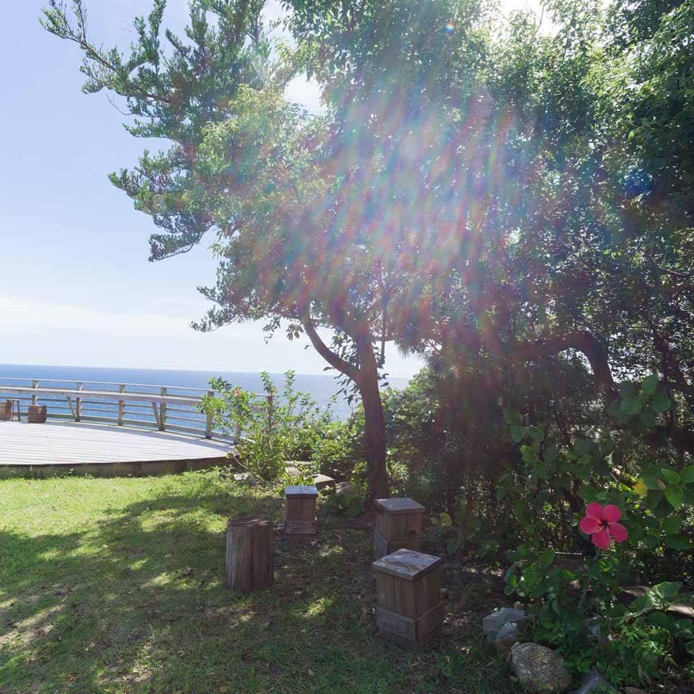屋久島 moss ocean house 庭