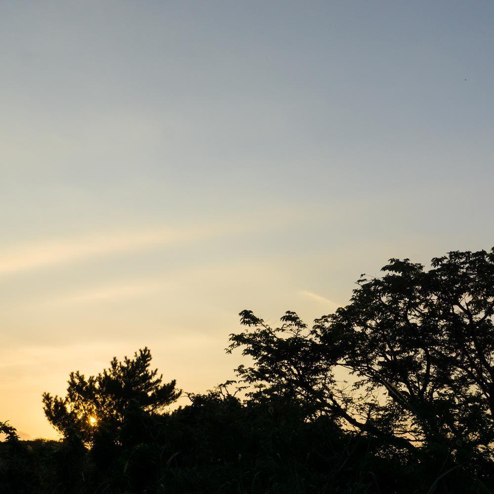 屋久島 夕暮れ時