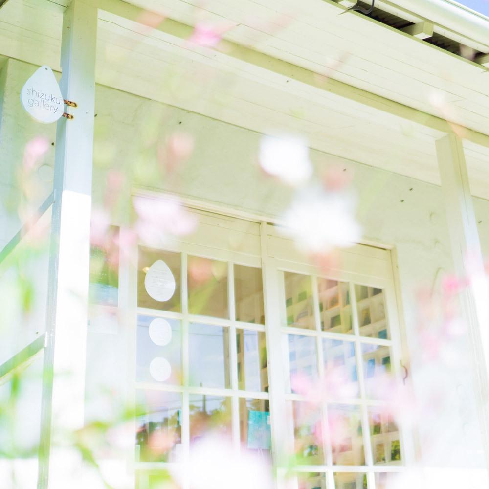 屋久島しずくギャラリーと花