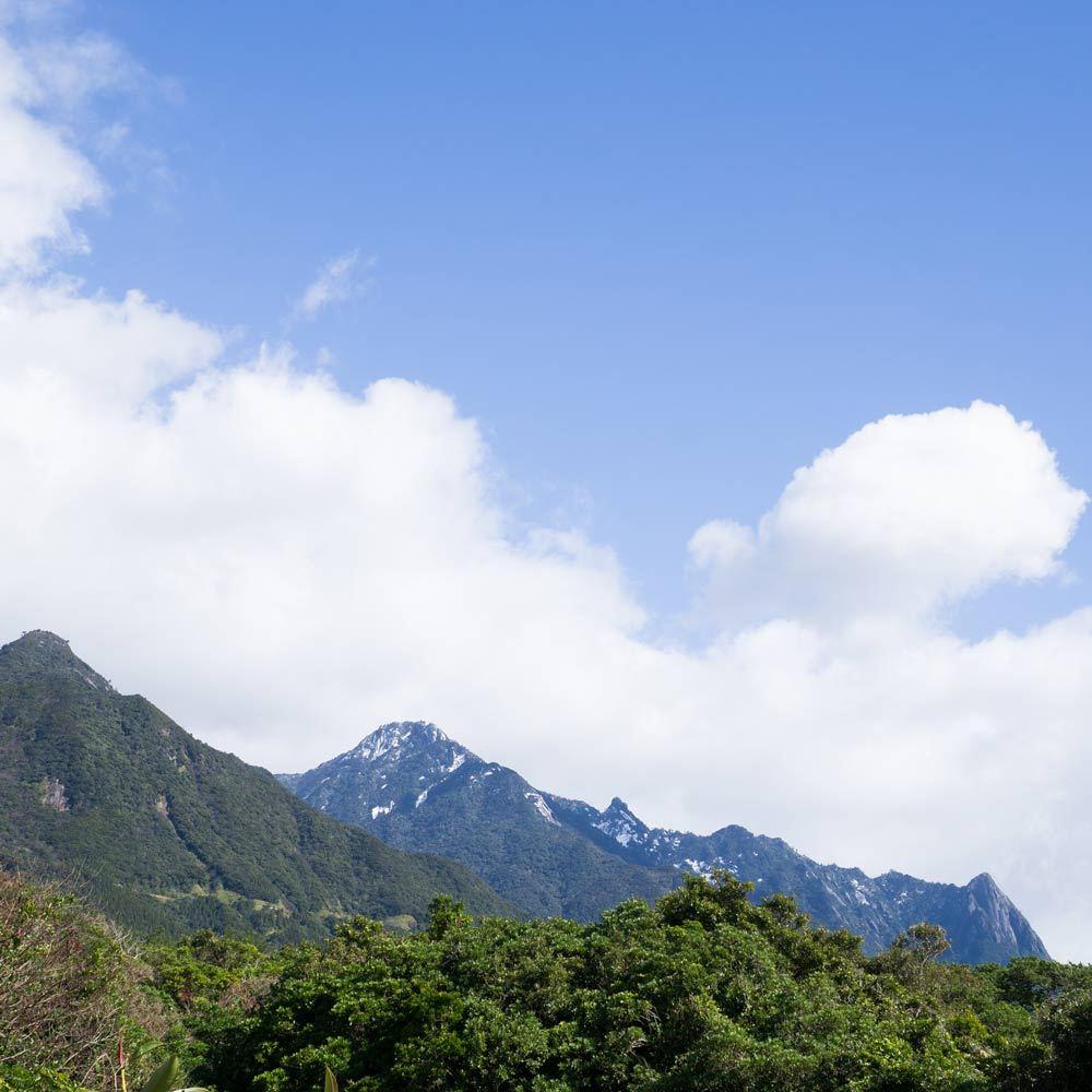 屋久島の山々 雪景色