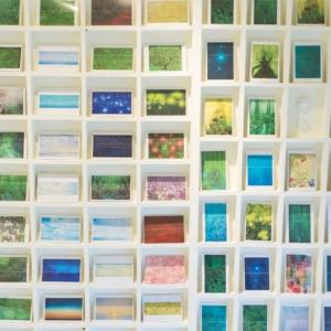 屋久島しずくギャラリー 絵画の部屋 ポストカード