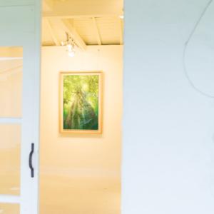 屋久島しずくギャラリー 絵画の部屋 高田裕子作