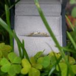 ゴールドリング ケースの中 屋久島の緑バック プラチナ、ダイヤモンド 屋久島でつくる結婚指輪